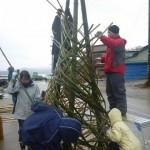 20120310竹のゲートつくり