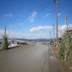 20120312竹のゲート