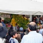 久留米ツツジ祭りチャリティー活動 活動の様子
